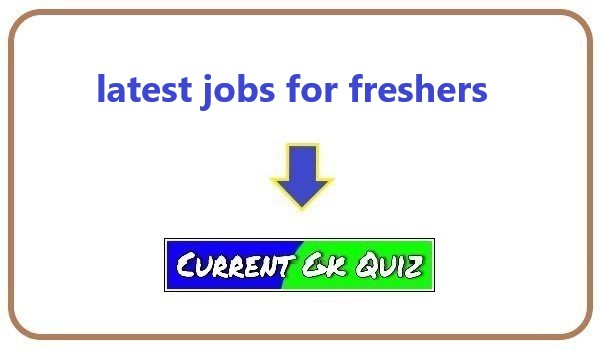 latest jobs for freshers